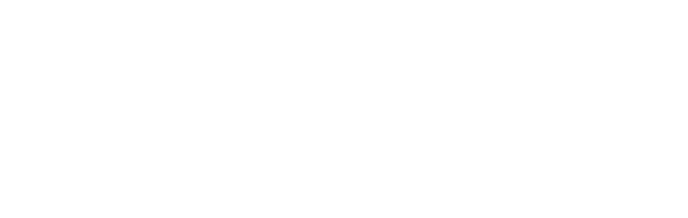 American Fidelity Foundation a different opinion logo